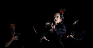 """El llanto se mueve"" (Banyuls-sur-Mer) @ Festival Ascension Flamenca 