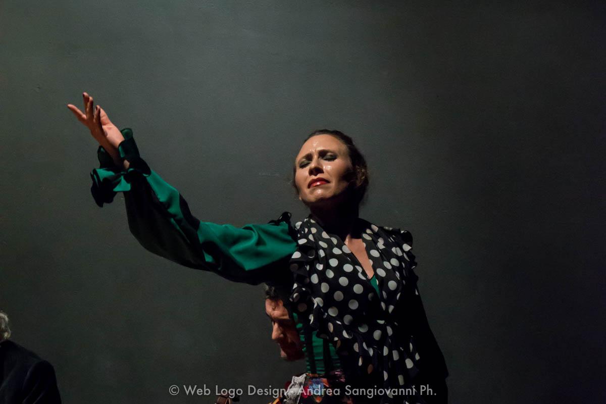 Irene La Sentío. Bailaora de Flamenco